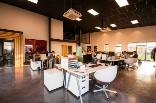 How to Scale Your Office Working with a Limited Budget
